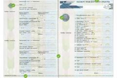 дубликат паспорта авто