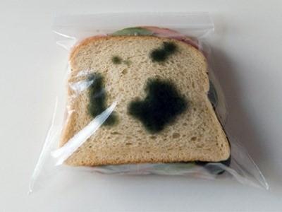 черная плесень на продуктах самая опасная