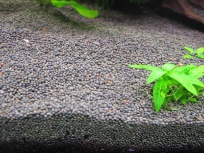 голландский грунт для аквариума