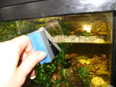 очистка аквариумов неодимовыми супер магнитами