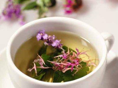 заваривание свежих листьев иван-чая