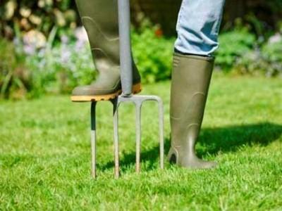 мероприятия по уходу за газоном весной