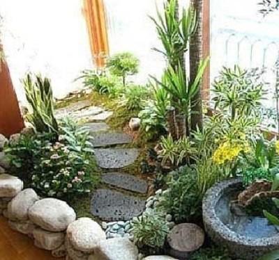 8выбор места для зимнего сада в квартире