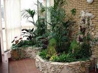 Зимний сад в квартире своими руками