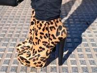 С чем носить леопардовые ботильоны
