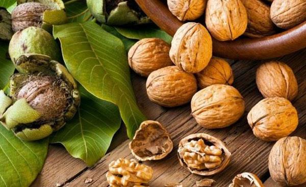О пользе орехов люди знали издавна